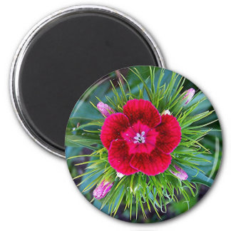 Mini Carnation Holiday Magnet