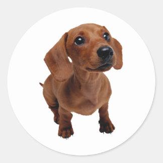 Mini Dachshund Decal Round Sticker