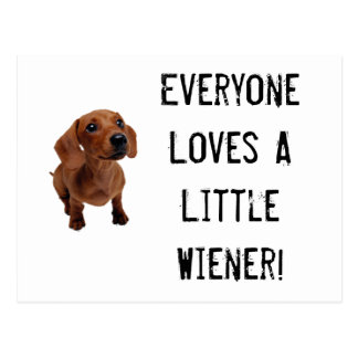 Mini Dachshund Little Wiener Postcard