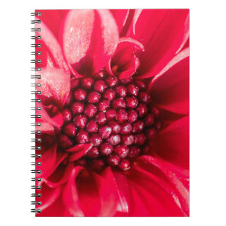 Mini Dahlia range Notebook