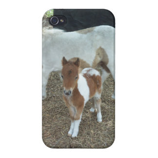 mini horse baby iphone case iPhone 4 cases