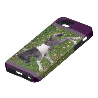 Mini Horse iPhone 5 Case
