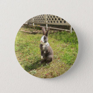 Mini Rex Rabbit Alice 5.7CM round badge