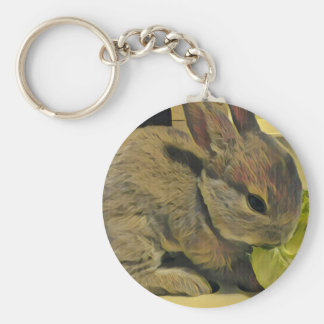 Mini Rex Rabbit BASIC round can key holder Key Ring