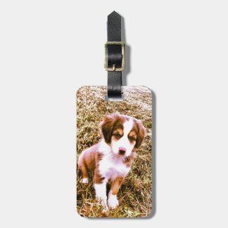 Miniature Australian Shepherd! Mini Aussie Puppy! Bag Tag