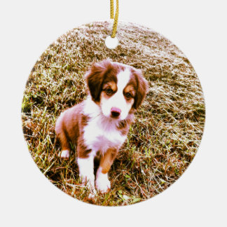 Miniature Australian Shepherd! Mini Aussie Puppy! Ceramic Ornament