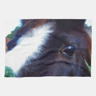 miniature horse face close-up tea towel
