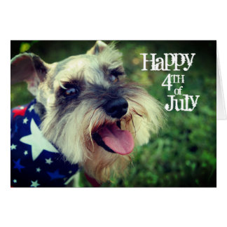 Miniature Schnauzer Happy 4th of July Card