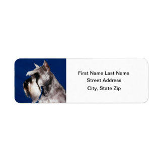 Miniature Schnauzer Head Study Return Address Label