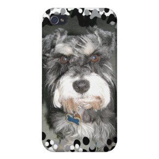 Miniature Schnauzer Photo Covers For iPhone 4