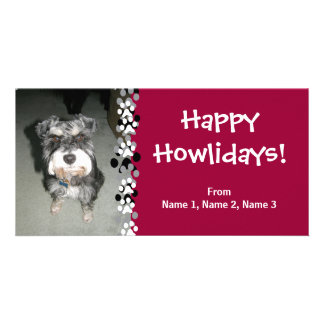 Miniature Schnauzer Photo Picture Card