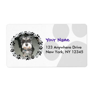 Miniature Schnauzer Photo Shipping Label