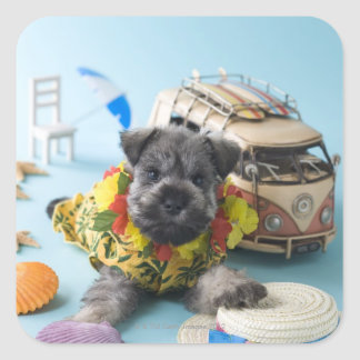 Miniature Schnauzer Puppy and Summer Vacation Square Sticker
