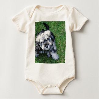 Miniature Schnauzer Puppy Baby Bodysuit