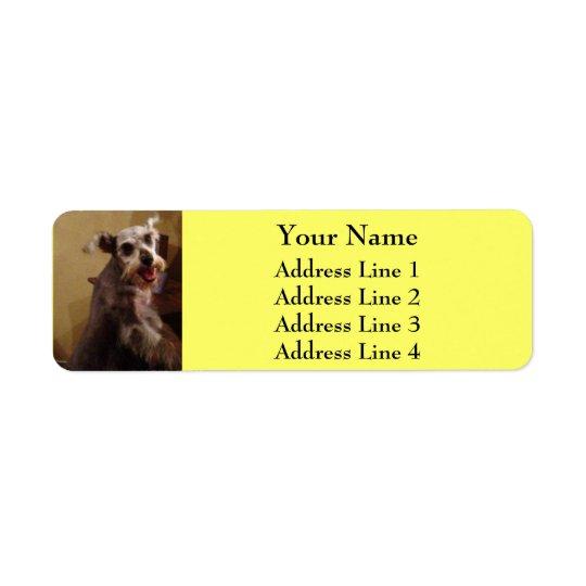 Miniature Schnauzer Yellow Return Address Labels