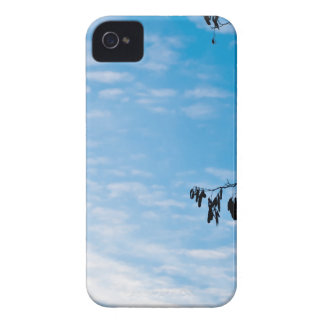 Minimalism photograph Case-Mate iPhone 4 cases