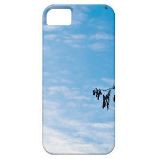 Minimalism photograph iPhone 5 cases
