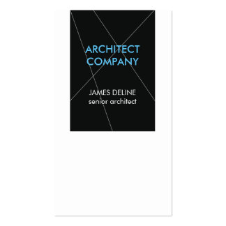Minimalist Elegant Architect Pack Of Standard Business Cards