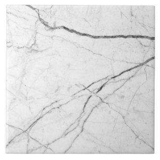 Minimalist modern marble look tile