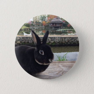 MiniRex rabbit Dad bunny Edward 5.7CM round badge