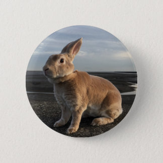 MiniRex rabbit Mom Catherine 5.7CM round badge