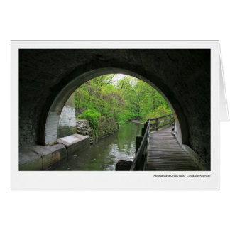 Minnehaha Creek near Lyndale Avenue Card