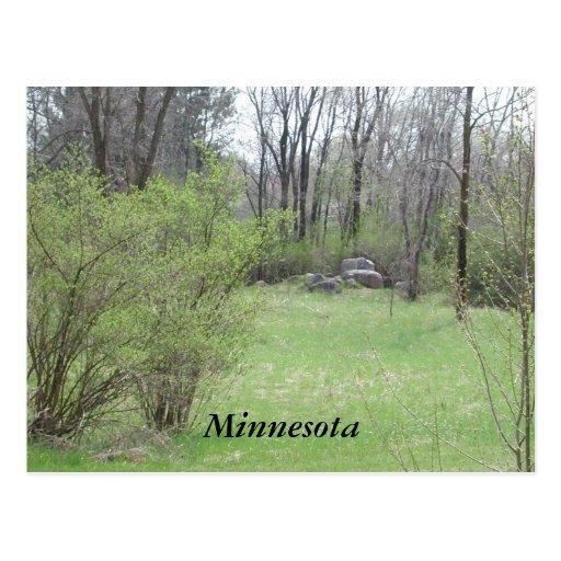 Minnesota Post Cards