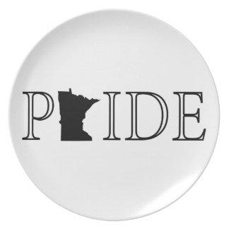 Minnesota Pride Plate