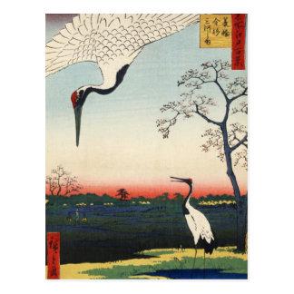 Minowa kanasugi mikawashima postcard