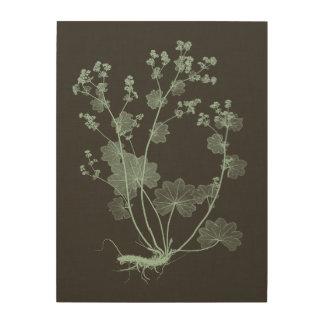 Mint & Charcoal Nature Study I Wood Print