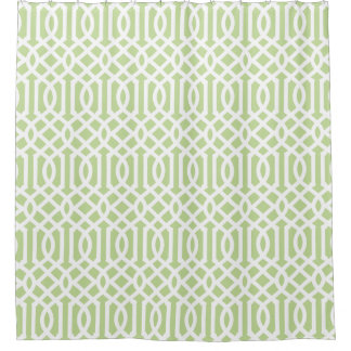 Mint Green and White Trellis Shower Curtain