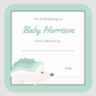 Mint Hedgehog Baby Shower Bookplate, neutral book Square Sticker