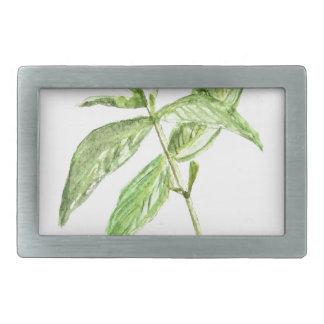 Mint herb belt buckles