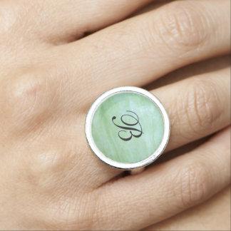 Mint or jade green garden squash photo