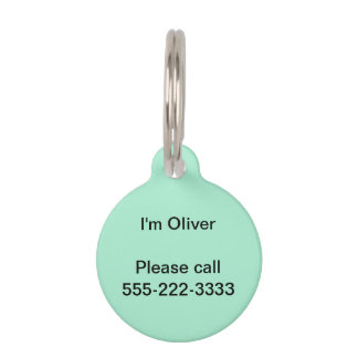 Mint Solid Color Pet ID Tag