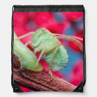 Minute Bug On Branch. Kruger National Park Drawstring Backpacks