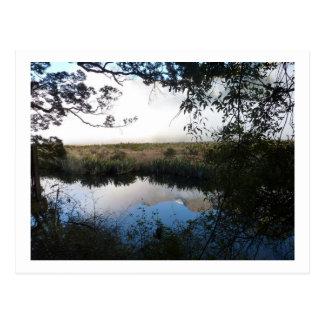 Mirror Lake, Australia Postcard