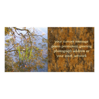 Mirrored Branches Photo Cards