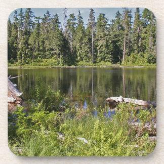 Mirrored Lake Coasters