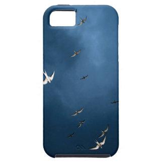 Miscellaneous - Arctic Tern & Blue Sky Pattern iPhone 5 Case