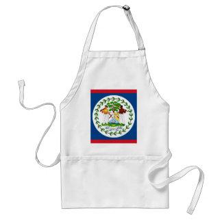Miscellaneous - Belize Pattern Flag Standard Apron