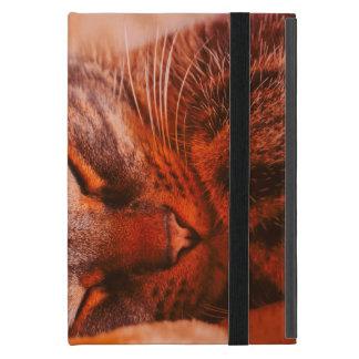 Mischief Free iPad Mini Cover
