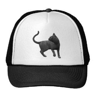 Mischievous Black Cat Hat