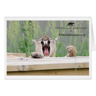 Misha - Cougar Greeting Card