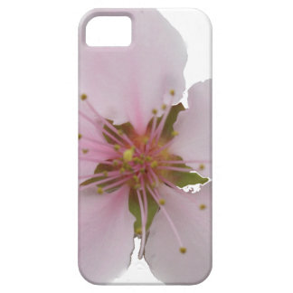 Miso Yummy Cherry Blossoms iPhone Case Case For The iPhone 5