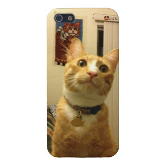 Miss.Chrissy's CGK iPhone5 case iPhone 5/5S Cover