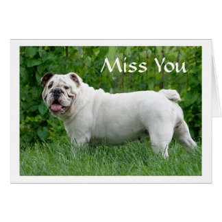 Miss You English Bulldog Puppy Dog Greeting Card