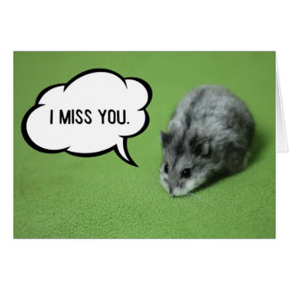 Miss You Funny Hamster Greeting Card