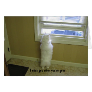 Miss you-No tail cat Card