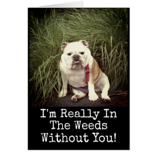 Miss You...Please Come Home English Bulldog Card